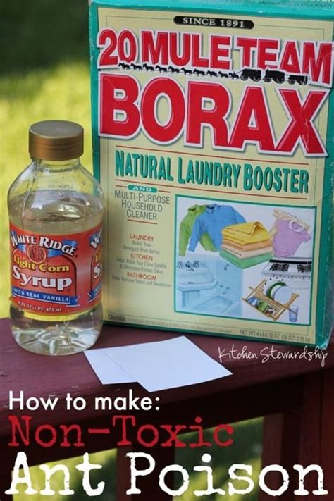 Ant Deterrent In Kitchen by How To Make Non Toxic Ant Poison Ants And