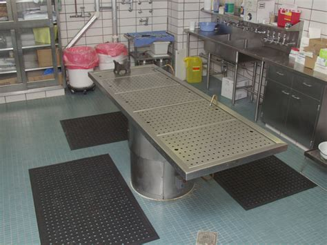 Commercial Kitchen Mats by Rubber Drainage Mats Are Commercial Kitchen Mats