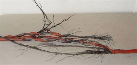 frayed electrical wire bsd electric the dangers of frayed wires