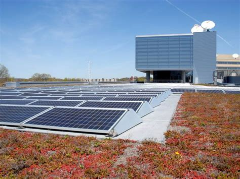 apex green roofs professional green roof design greenroofs com projects wgbh boston