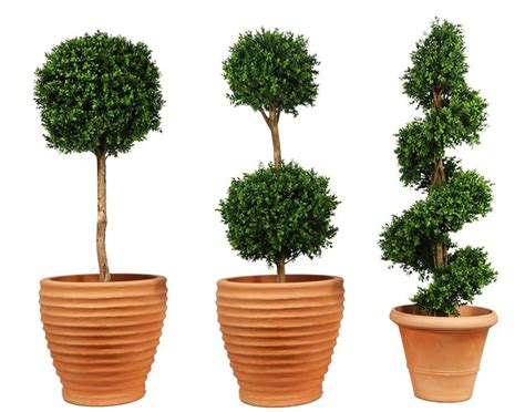 alberi in vaso da esterno alberi artificiali piante finte alberi finti