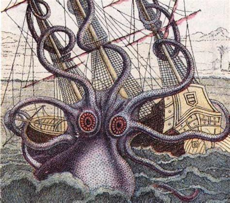 boat and octopus drawing octopus shipwreck drawing www pixshark images