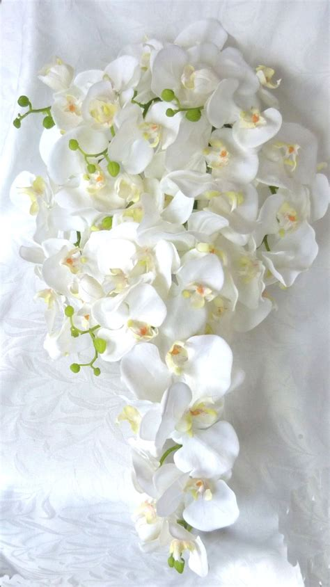 Orchid Wedding Bouquet by Cascade White Orchid Bouquet Boutonniere Phalaenopsis