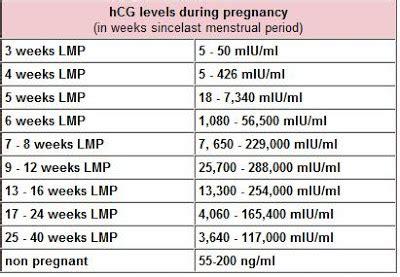 pregnant hcg levels  pregnancy