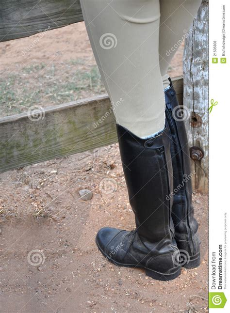 dirty riding boots english riding boots stock photo image of color dirty