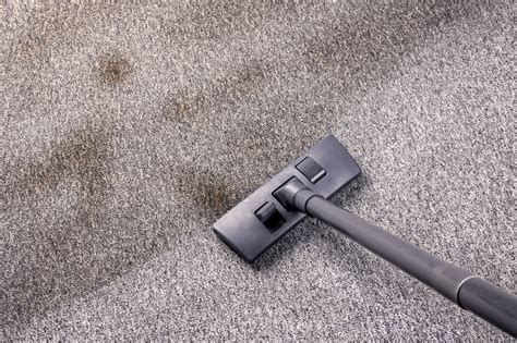 house cleaning fort collins fort collins carpet cleaners meze blog