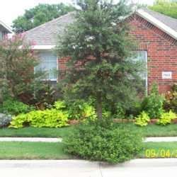 Landscaping Ideas Zone 8a Browsing Landscaping Database Zone 8a