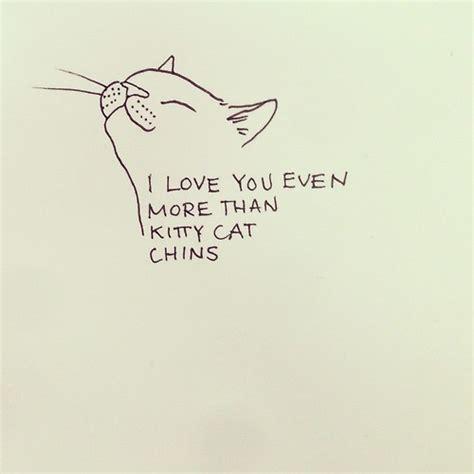 cat haiku sweet verses books adorable artsy cat drawing pretty quotes