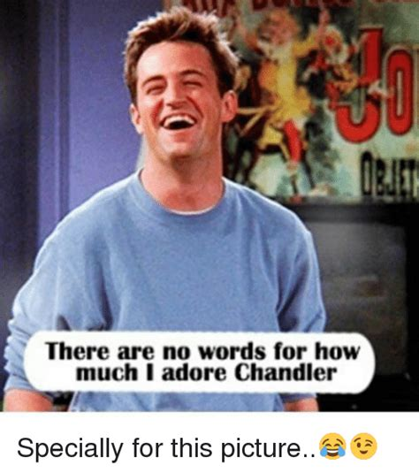 Chandler Meme - there are no words for how much i adore chandler specially