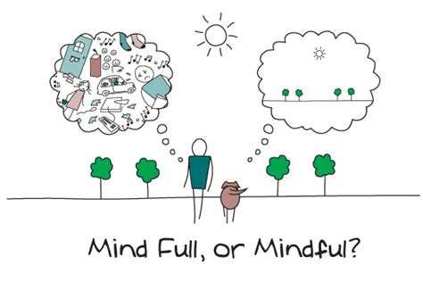mindfulness for create a happier for your by reducing stress anxiety and depression books exhaustion frustration mindfulness being happy we