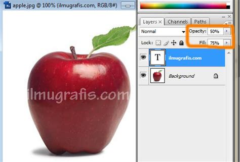 membuat watermark php tutorial photoshop dasar belajar layout tips dan trik
