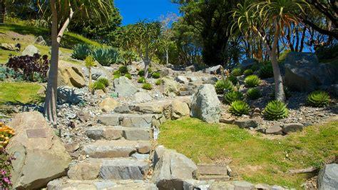 Wellington Botanical Gardens Botanic Gardens Wellington Attraction Expedia Au
