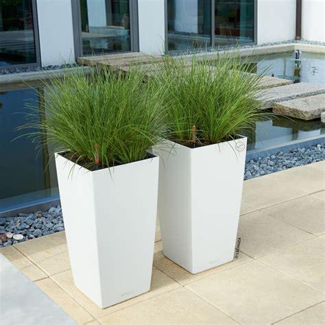 pot pour plante exterieur