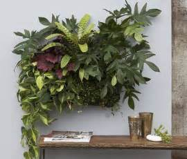 Wall Garden Indoor by How To Make An Indoor Garden Www Freshinterior Me
