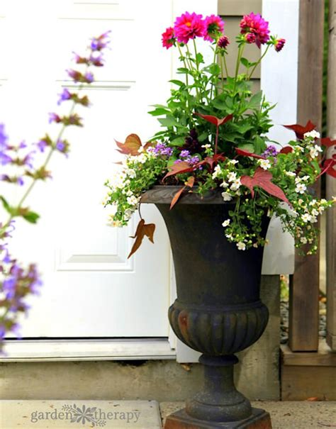 Beautiful Planter Ideas by Simple Colorful Planter Ideas For Sun Gardening Viral