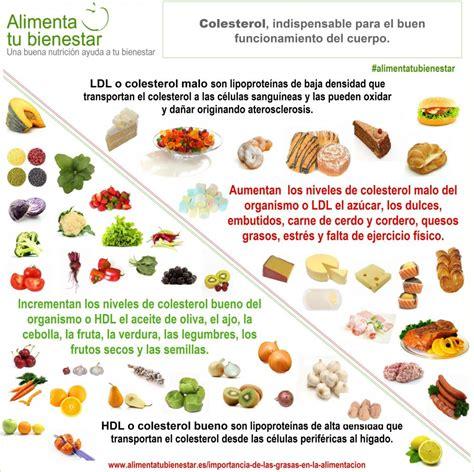 alimentos con colesterol la importancia de las grasas en la alimentaci 243 n