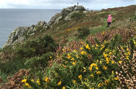 503325 the road to zennor zennor the tinners arms forever cornwall