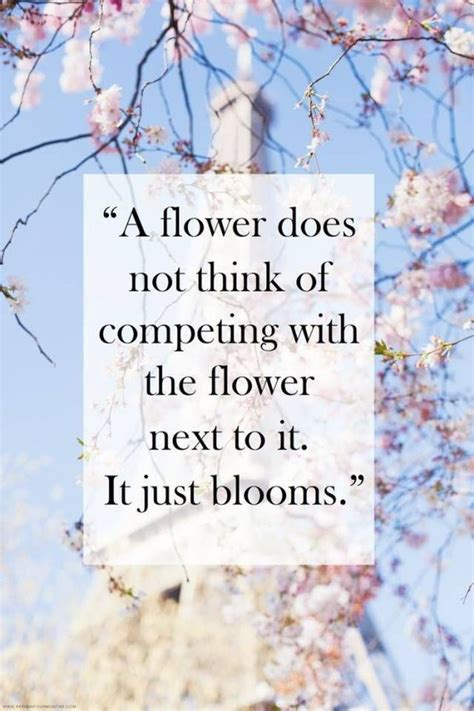 A Fashion Writers Observation And Other Monday Thoughts by 2015 Beautiful Blooms Blossom Flower