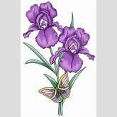 Purple Iris Flower Clip Art – Clipart Free Download