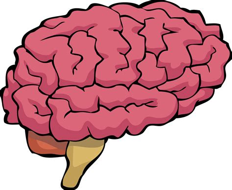brain clipart cartoon brain clipart clipart collection brain clipart