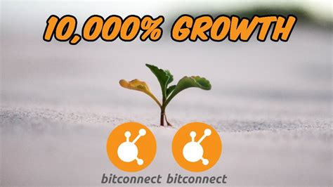 bitconnect full tutorial bitconnect has grew 10 000 in price since ico youtube
