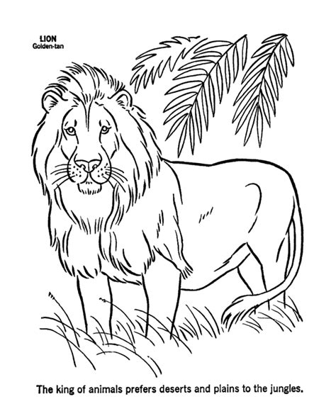 printable lion images free coloring pages of lion roaring