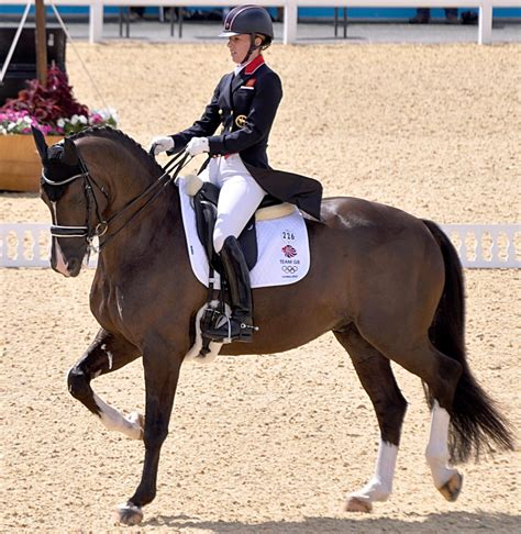 102 best images about dressage show attire on pinterest what to wear in a dressage competition dressage outfits