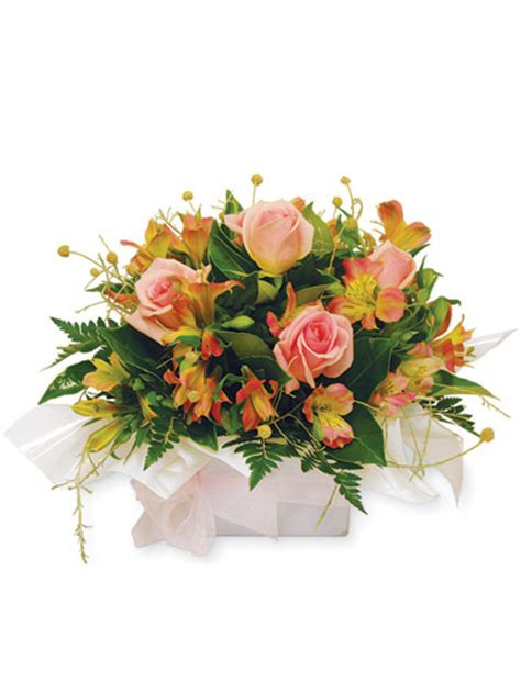 Cheap Florist by Cheapest Flower Delivery Driverlayer Search Engine