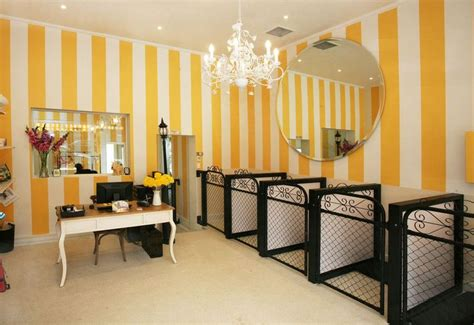 grooming salon grooming salon spaces