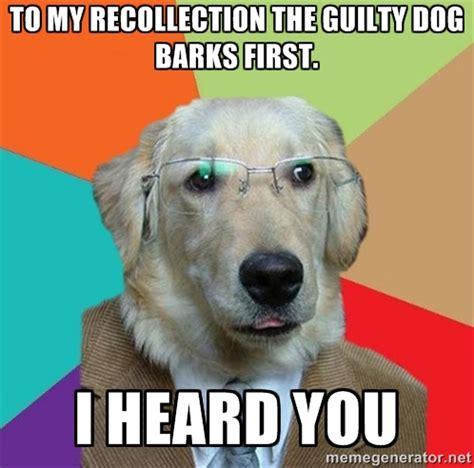 Guilt Meme - guilty dog memes image memes at relatably com