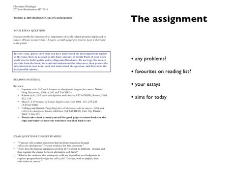 Dos And Don Ts Of Essay Writing by Dos And Don Ts Of Essay Writing Quotes List Service Essay