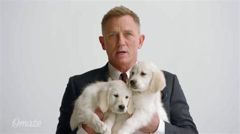 daniel craig puppies aston martin omaze daniel craig and puppies culture pub