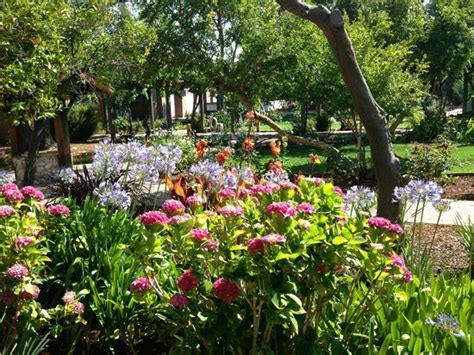 Gardens At San Luis Obispo Mission Picture Of Mission San Luis Obispo Botanical Garden