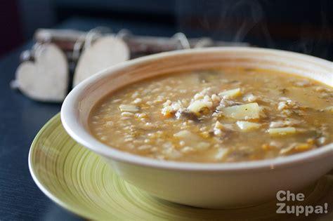 come cucinare la zuppa di farro zuppa di farro invernale chezuppa chezuppa