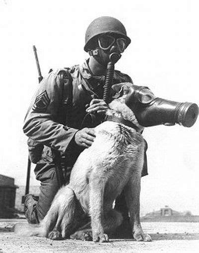 Soldado americano y su perro con máscara antigás
