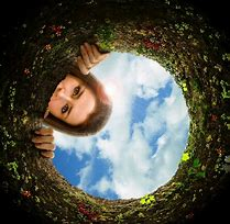 Image result for Rabbit Hole