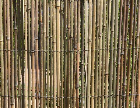 bambus matten bambusmatte sichtschutzzaun sichtschutz bambus zaun