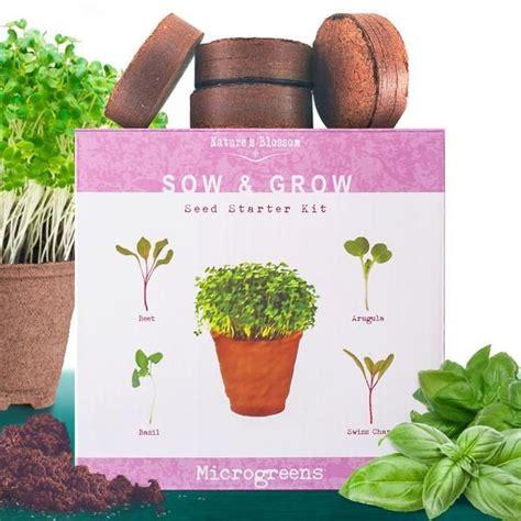 microgreens kit grow  types  micro greens  seed