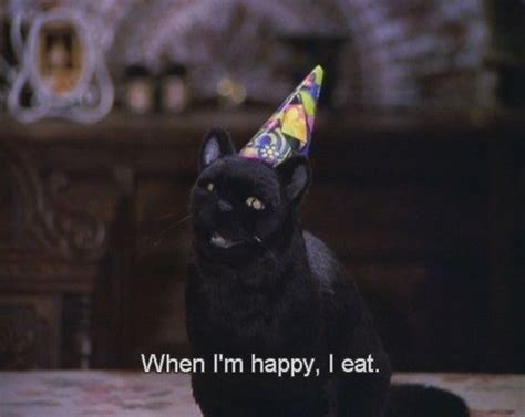 Cat Salem untitled via image 1994102 by d on favim