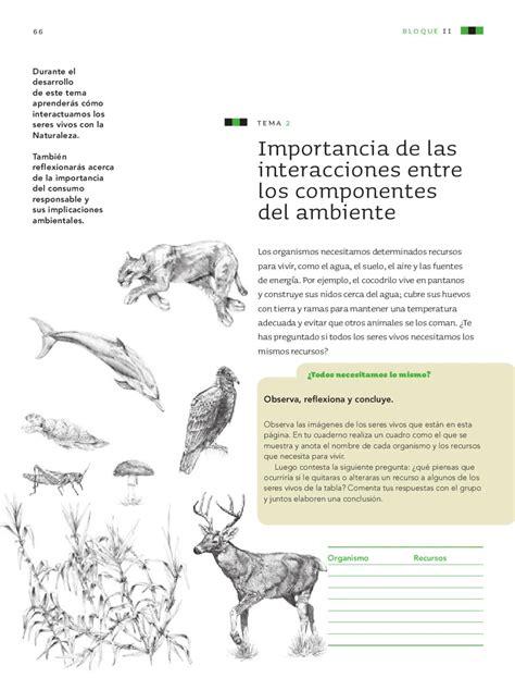 libro ciencias naturales 6 to grado issuu consultarbecascom libro de ciencias naturales de 6 grado issuu libro de