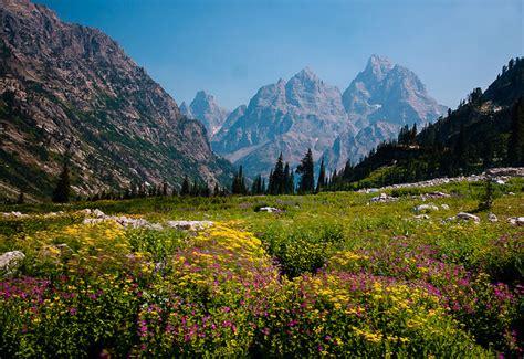 parco dei fiori i 10 luoghi pi 249 colorati mondo