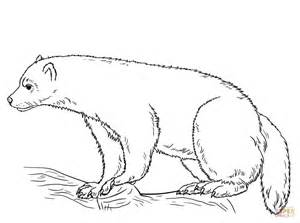 Wolverine Animal Coloring Pages wolverine animal coloring page free printable coloring