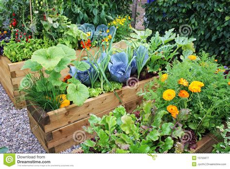 Vegetable Garden Royalty Free Stock Photography Image Vegetable Garden Pictures Free
