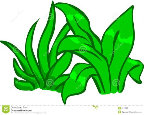 plant stock vector illustration  cartoon plants