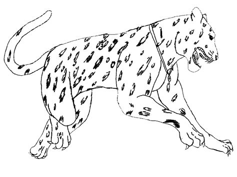 animals coloring pages coloring kids coloring kids