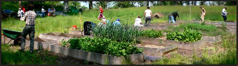 Starting A Community Garden by How To Start A Community Garden
