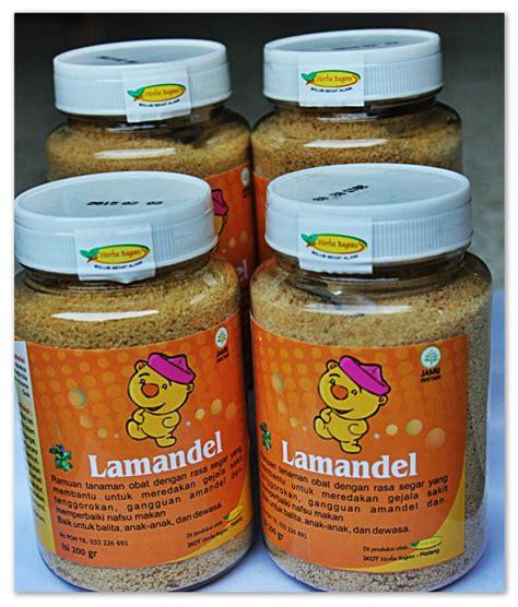 Obat Herbal Amandel Obat Herbal Amandel obat amandel tradisional alami herbal obat amandel