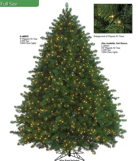 montana fir christmas tree size trees
