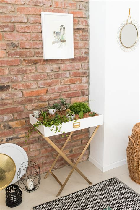 coole pflanzen fürs zimmer vorzimmer ikea