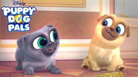puppy pals series trailer puppy pals disney junior